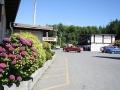 flowers320140714_3641.jpg
