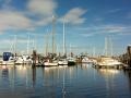 Port McNeill Hotel Views